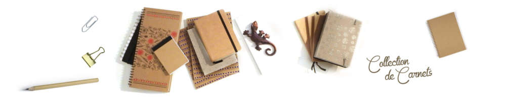 COLLECTION DE CARNETS