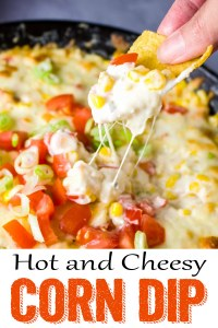 Hot corn dip, cheesy corn dip, hot and cheesy corn dip, appetizer