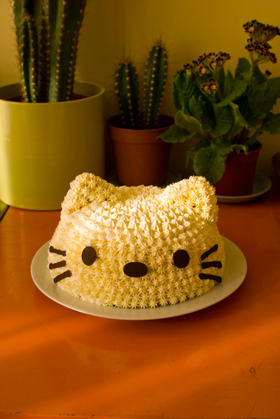 CocoMe Blog Archive CocoMes Animal Dome Cakes