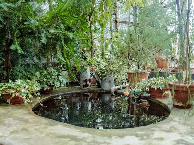 jardin et exterieur cocon deco
