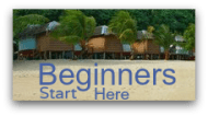 Beginners Start Learning About Coconuts Here