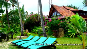Coconut Village Affordable Beach Holiday Villas For Rent On