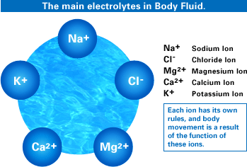 Electrolytes – What do they Do and How Do I Get Them ...