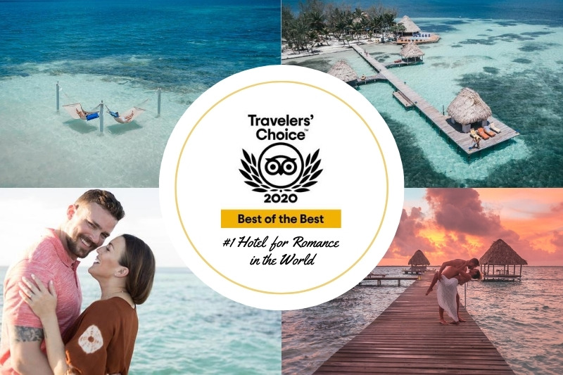 TripAdvisor Surprises Coco Plum Island Resort Staff With More Awards