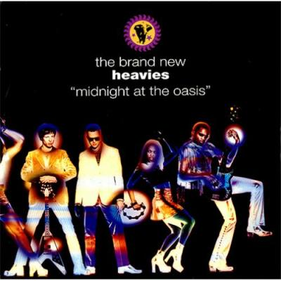 Midnight at the Oasis Artwork