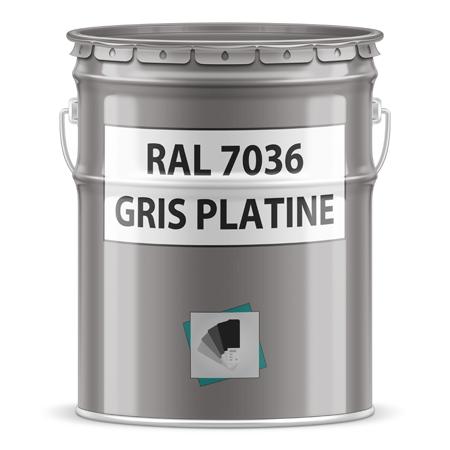 ral 7036 gris platine pot ou bombe