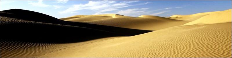 Rallye Aicha des Gazelles du Maroc