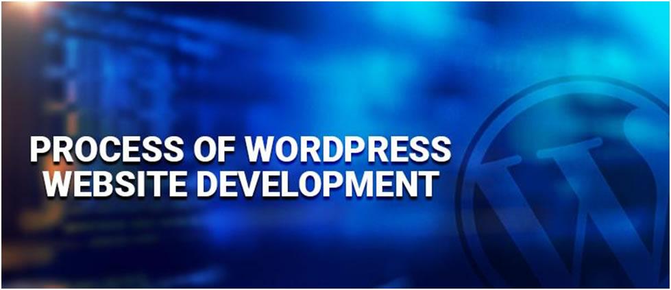 WordPress Developer2