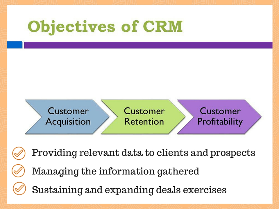 CRM customization