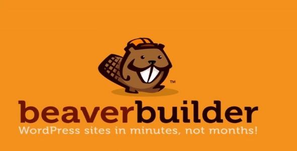 Beaver Builder Pro v2.2.0.4