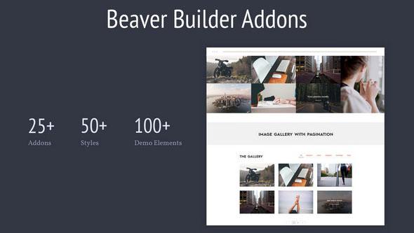 Livemesh - Addons for Beaver Builder Pro v2.0.1