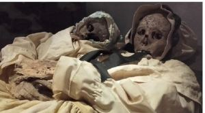 Vac Mummies Hungary