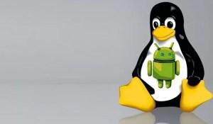 Android'den Linux Sunucusuna Erişim Nasıl Yapılır
