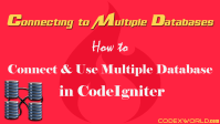 connect-use-multiple-database -codeigniter-codexworld
