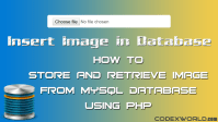 store-retrieve-image-from-database-php-mysql-codexworld