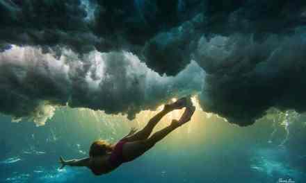 Un autre vision des vagues grâce à Sarah Lee