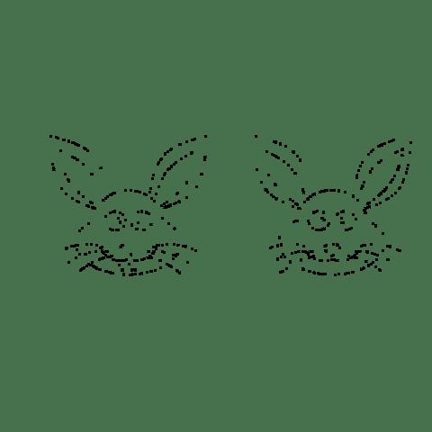 Sampled rabbit image