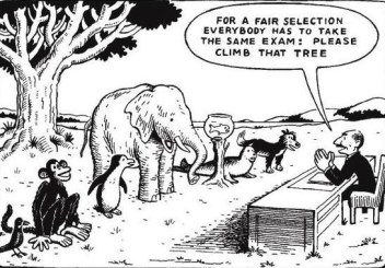 For a fair selection everybody has to take the same exam: please climb that tree.