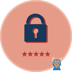 Cyber Security HALF-SIZE