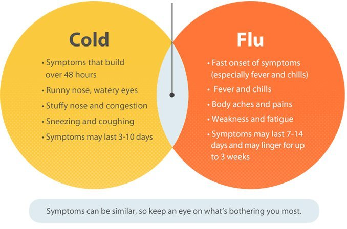 Cold & Flu - Causes, Symptoms & Treatment - CODRAL® New Zealand