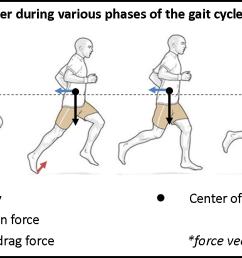 gait cycle free body diagram [ 1489 x 670 Pixel ]