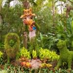 Lion-King-Topiary-Epcot-Flower-Garden-Festival