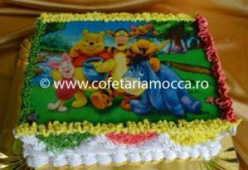 tort cu poza winnie the pooh