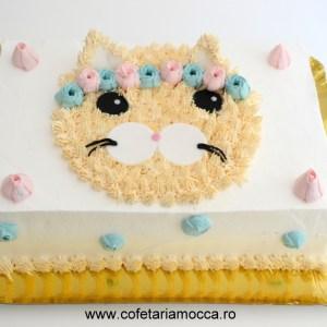 tort pisica frisca 04