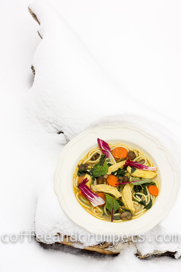 curried chicken noodle soup-4