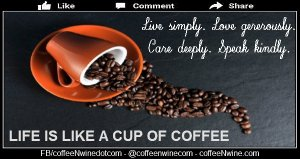 Life is like a cup of coffee (Life is Like a Cup of Coffee)