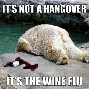 How to avoid a Wine Hangover