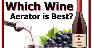 Which Wine Aerator is Best