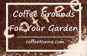 Coffee Grounds For Your Garden