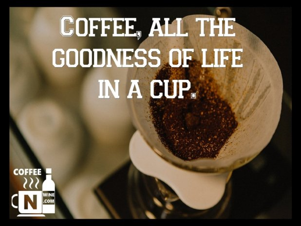 Coffee all the goodness of life in a cup - Quotes About Coffee