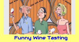 Funny Wine Tasting Cartoon Video