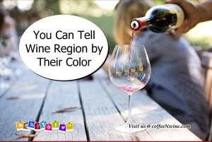 You Can Tell Wine Region by Their Color - Facts About Wine 1