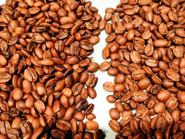 Home roasted beans left compared to a professional roast right