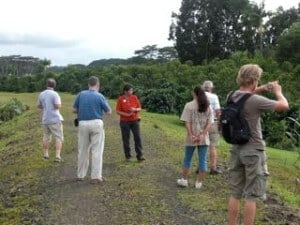 Farm tour at the Hilo Coffee Mill