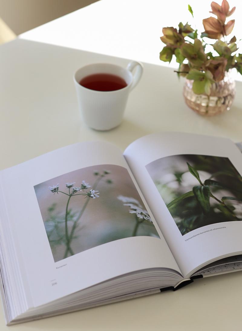 puutarhakauden aloitus, puutarhasuunnitelmat, Sato ja Taimi kirjat