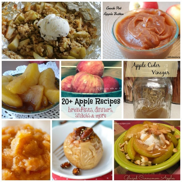 Part 2 of our Apple Roundups. You'll find 20+ Apple Recipes featuring dinners, breakfasts, snacks, baked apples, and many more apple recipes.