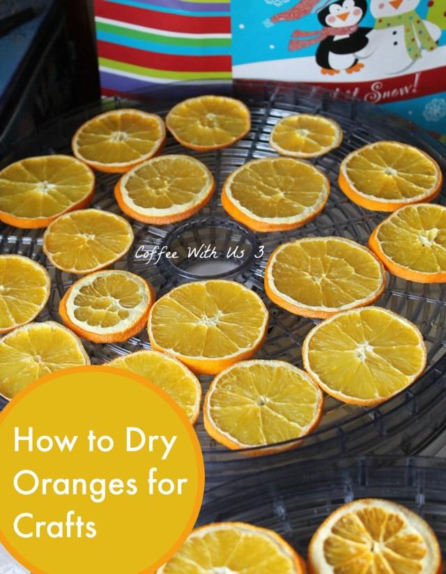 How to Dry Oranges