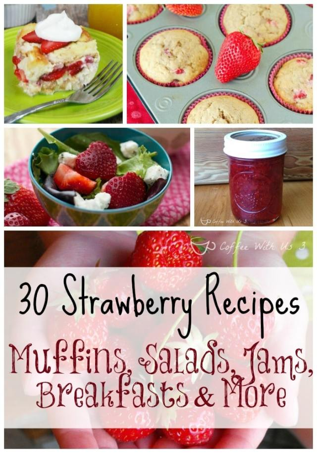 Love Strawberries?  Check out these 30 great strawberry recipes. Includes muffins, drinks, breakfasts, jams & much more!