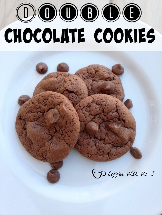 Chocolate Pudding Mix Cookies