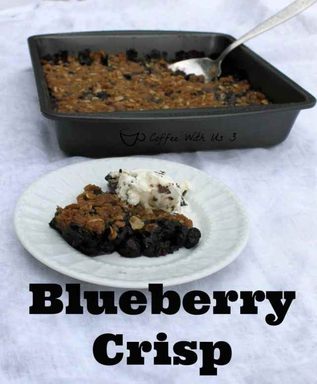 Good old-fashioned Blueberry Crisp dessert with a golden oat topping!