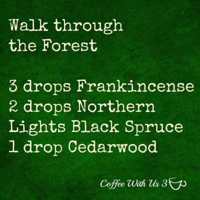 walk-through-the-forest