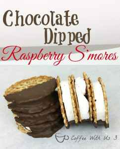 Chocolate Dipped Raspberry S'mores are a decedent treat that is super easy to make. They are perfect impressing your friends. They look like they took hours and they taste amazing!