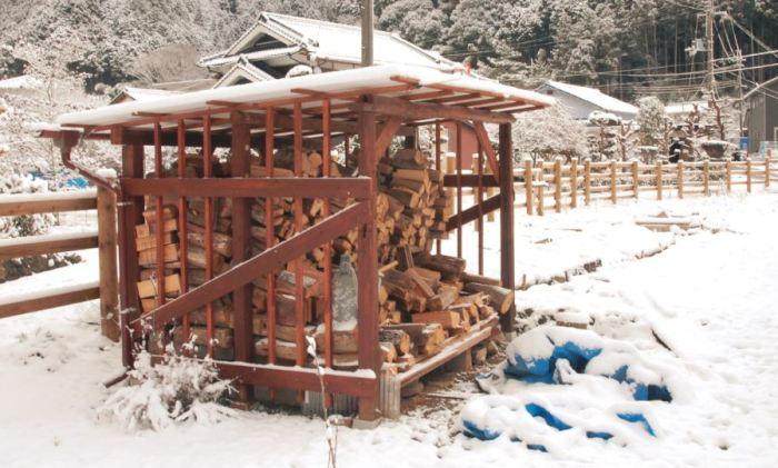 construction abris bois
