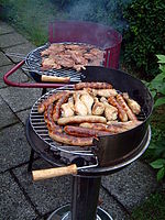 barbecue grill et plancha
