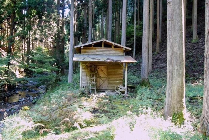 construire abri pour bois