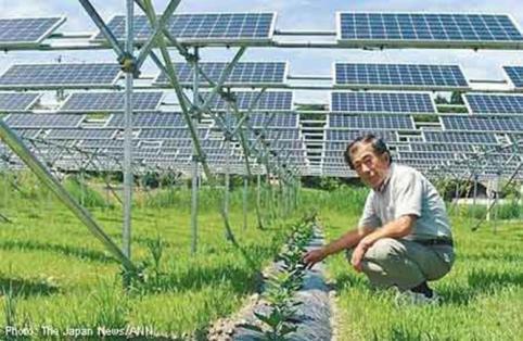 prix de panneau solaire photovoltaïque